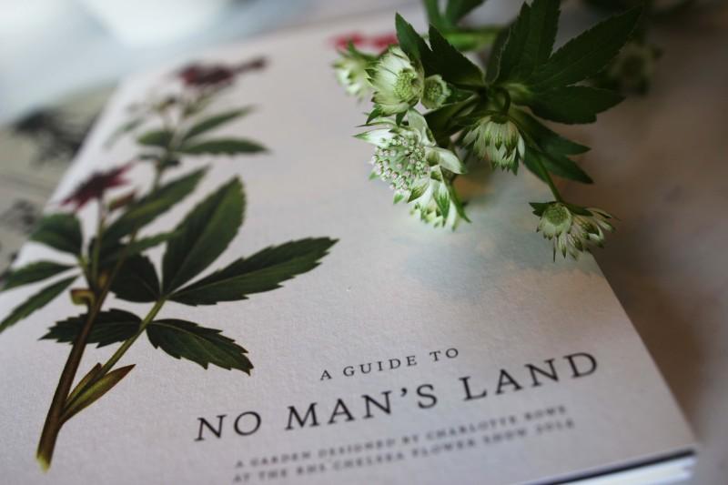 CFS No mans land